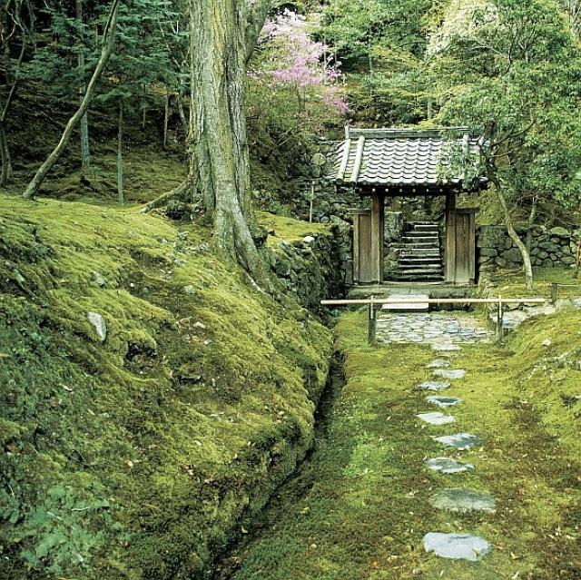 Japan moosgarten in kyoto - Moosgarten kyoto ...